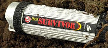 Flash Survivor