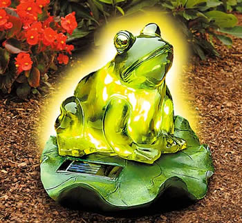 Incroyable Frog Solar Light