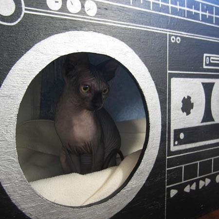 Ghetto Blaster Cat House