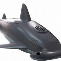 Hammerhead Shark Radio