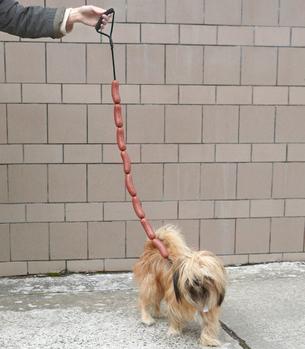 Sausage Link Dog Leash