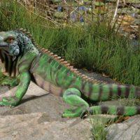 Iguana Garden Statue