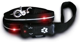 Visiglo Lighted Leash