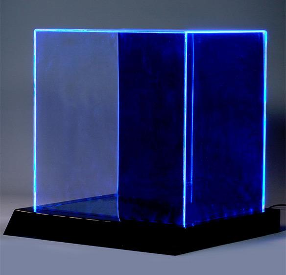 LED Lighted Display Case