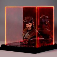 Lighted Collectibles Display Case