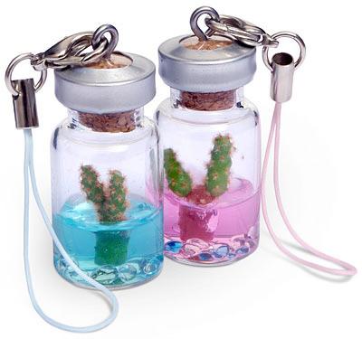 Tiny Pet Cactus