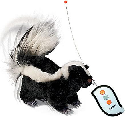 R/C Skunk