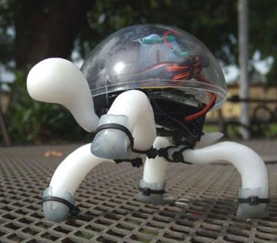 R/C Robot Tortoise