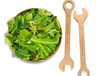 Salad Wrench Tools