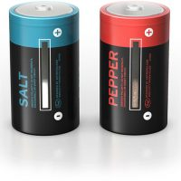 D Battery Salt and Pepper Shakers