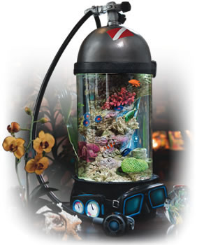 Ocean Treasures Collection Bottom Time Aquarium