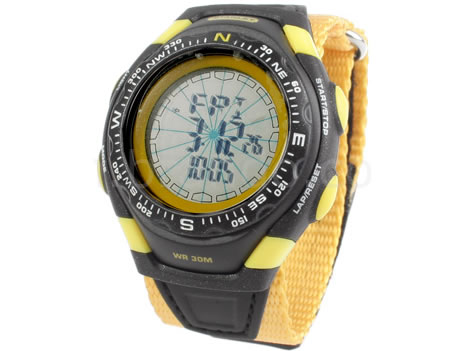 Stanley Compass Watch