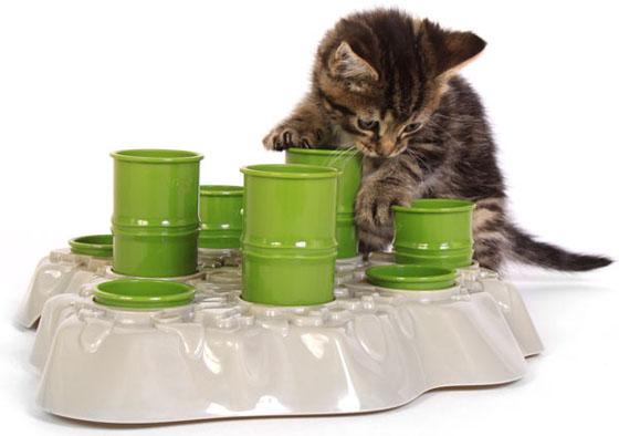 stimulo feeding station kitten