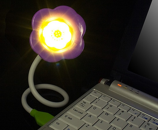 USB Flower Light with Aroma Diffuser